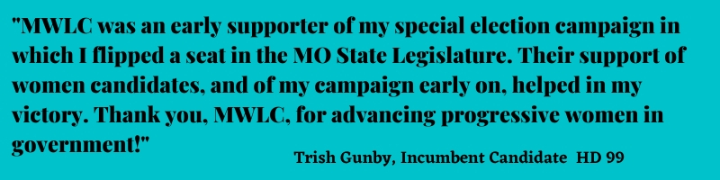 Candidate Quote from Trish Gunby